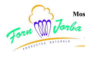 27-Forn_jorba